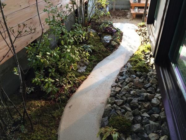 日陰の苔庭1_O様邸