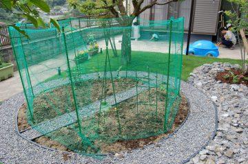 備前市I様邸家庭菜園3